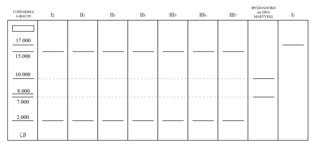 2017 Προσομοίωση-04
