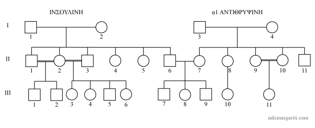 2017 Διαγώνισμα προσομοίωσης Β-03